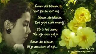 Rozen Die Bloeien  by Rose Pandanwangi.mpg