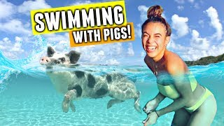 SWIMMING WITH PIGS IN THE BAHAMAS! 🐷💦🇧🇸
