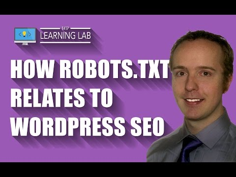 Check The Robots.txt File For Potential WordPress SEO Issues | WP Learning Lab
