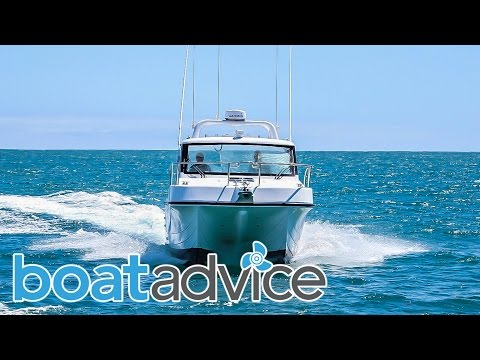 Leisure Cat 9000 Kingfisher Review