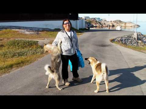 Groenlandia - Disko Bay