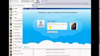Skype  Установка, настройка, основы работы