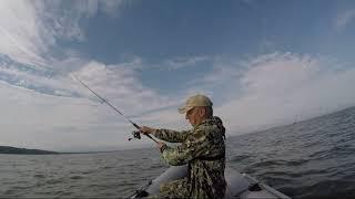 РЫБА ЛЮБИТ ТЕРПЕЛИВЫХ Рыбалка на Спиннинг в Калининградском заливе