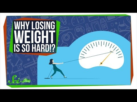 The Real Reason It's So Hard to Lose Weight