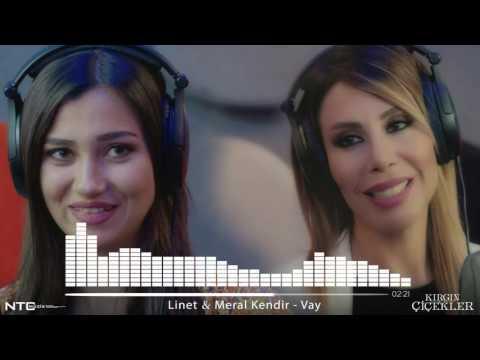 Kırgın çiçekler Meral Linet Vay популярные видеоролики