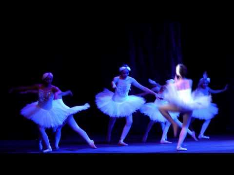 Ballet Concert 2015 - Swan Lake Act 1 and 2