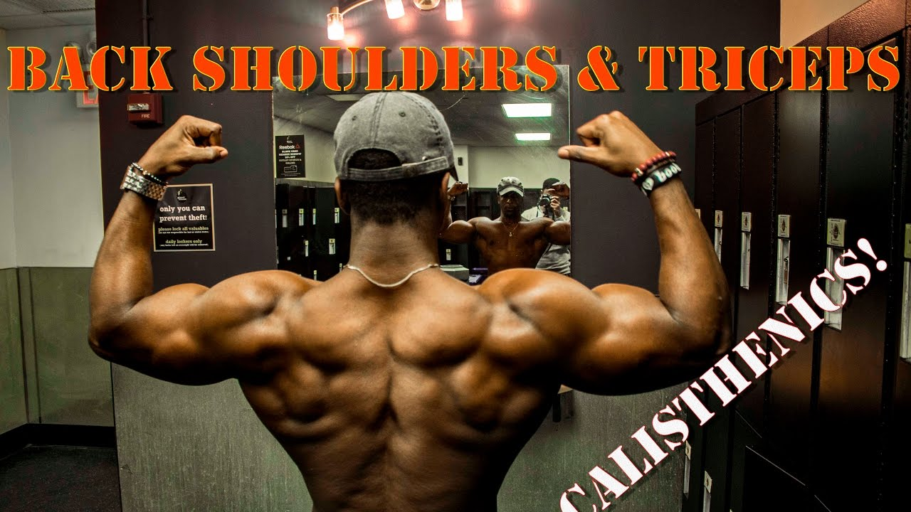 Full CALISTHENICS routine to Build a THICKER Back, Shoulders & Triceps!