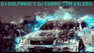 NUEVO TEMA RUMBAS PORTUGUESAS 2017 DJ DOLFINHO REMIX DJ CHEKO CON SALERO