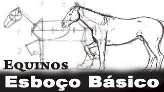 N°1 Equinos Perfil - Esboço e Contorno - Anatomia de Animais (Cavalo)