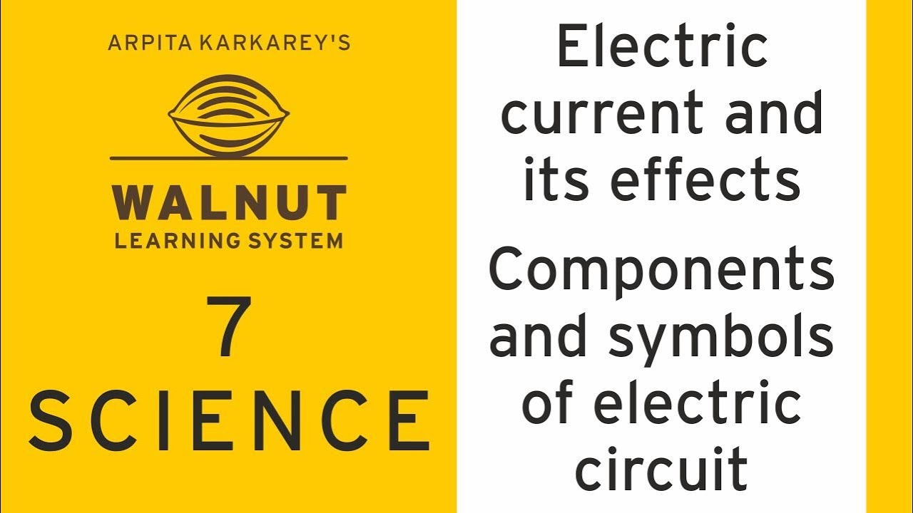 7 Science Electric Current And Its Effects Components And
