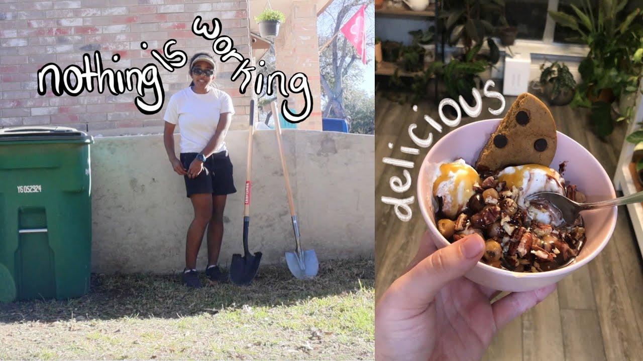 all our DIYs FAIL 💩 (pet compost & vegan super bowl nomz)   san antonio vlogger