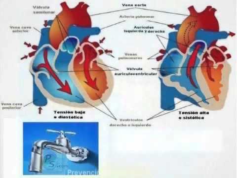 Presión arterial sistólica y diastólica muy juntas