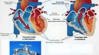 ¿Qué pasa si su presión arterial diastólica es baja?