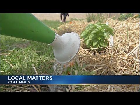 Creating healthy communities through food