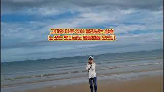 #만리포사랑#하모니카A#지구사랑가요제#내딸하자김다현노래…