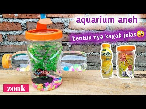 Cara Membuat Aquarium Dari Barang Bekas Untuk Ikan Cupang Youtube