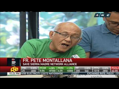 Dominguez seeks more mining investments in PH