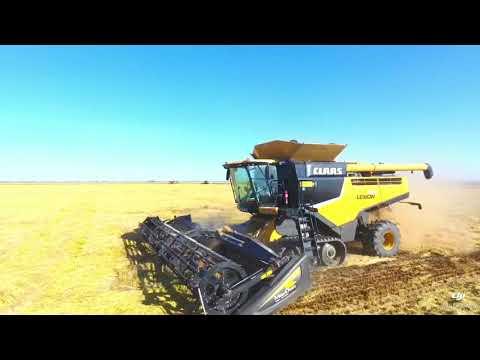 California Rice Harvest 2017