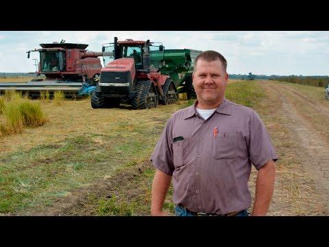 Missouri Rice Farming