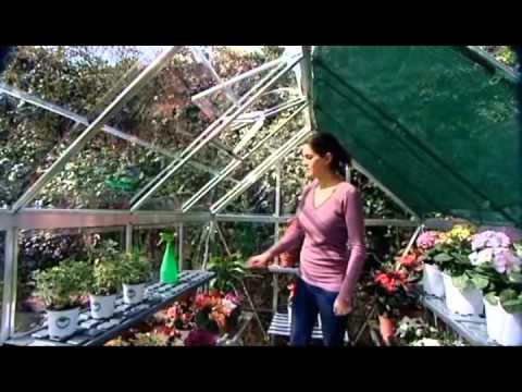 Palram Greenhouse Accessories Plant Hangers