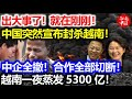 啊,中国的土地 - 女高音独唱:明苑 Ming Yuan - YouTube