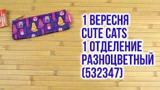 Розпакування 1 Вересня Cute Cats 1 відділення Різнобарвний 532347