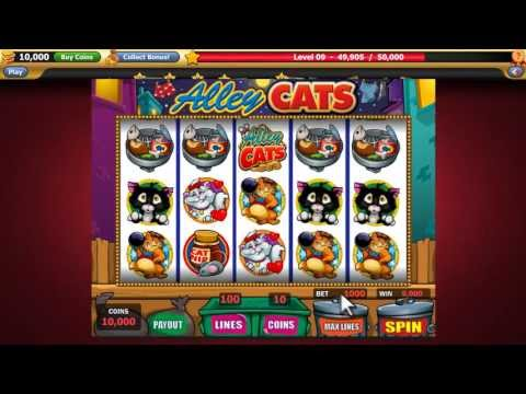 Welcome to Clickfun Casino!