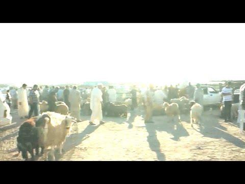 Sacrifice Feast: Libya prepares for Eid amidst war and uncertainty