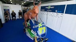 A Sideways Glance at 2013: MotoGP™ Wild Life