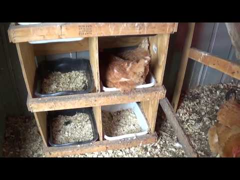 Metal shed chicken coop door repair