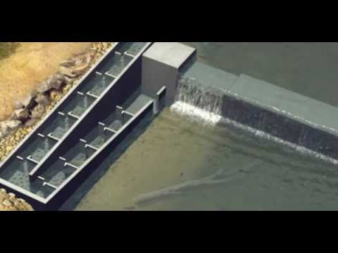 How a vertical-slot fishway works