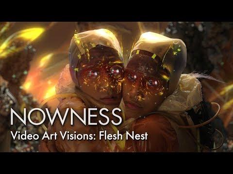 Andrew Thomas Huang's Flesh Nest