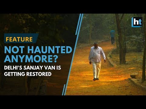 'Haunted' in folklore, south Delhi's Sanjay Van is now a birders' paradise
