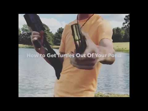 How To Get Turtles Out, And KEEP THEM OUT, Of Your Pond!