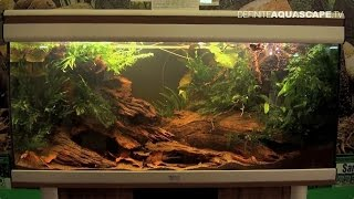 Biotope Aquarium Design Contest 2014 - the 2nd place, Africa