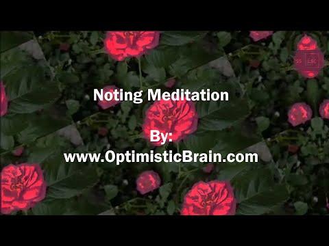 Noting Meditation - 20 Minutes