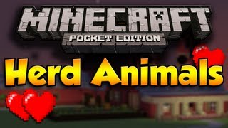 [OLD] How To Herd And Farm Animals In Minecraft Pocket Edition (No Breeding)