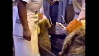 A.M.P. Beef, Mutton & Pig Slaughter Floors, 1993