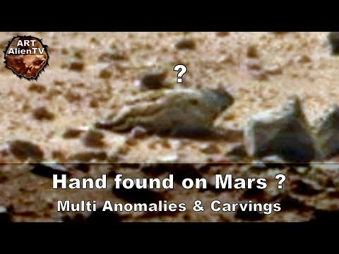 Hand found on Mars ? Multi Anomalies & Carvings