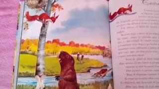Poveste video - Castorul Zăpăcit - Povești despre animalele lumii