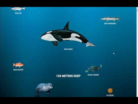 The Deep Sea - Tiefseeerkundung