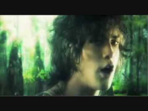 Mgmt Electric Feel Special Extended Video