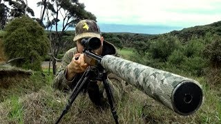 Hunting Two Fallow deer in New Zealand # 207