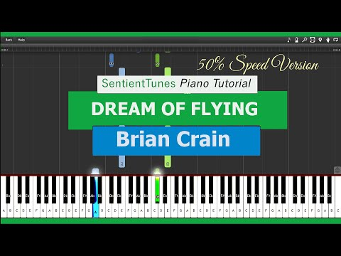 Dream Of Flying - Piano Tutorial 50% Speed - Brian Crain