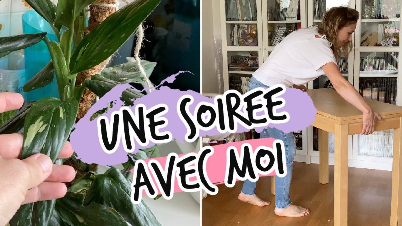 UNE SOIRÉE (BANALE) AVEC MOI : REORGANISATION, PLANTES... VLOG MAMAN ENTREPRENEUR