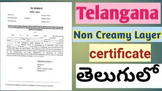 Non creamy layer certificate (Telangana) in Telugu || how to get non creamy layer certificate