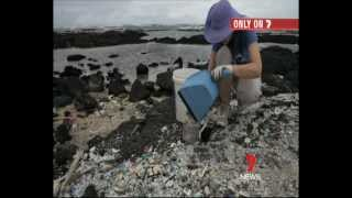 Take 3 and co-founder Tim Silverwood on Channel 7 News Sept. 1st 2011 - Great Pacific Garbage Patch