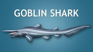 Elltharis - GOBLIN SHARK (5★)
