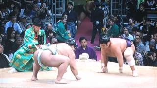 平成28年大相撲九州場所 中日 11月20日 満員御礼 Sumo -Kyushu Basho.