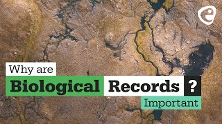 Why are Biological Records Important? (2 of 3)
